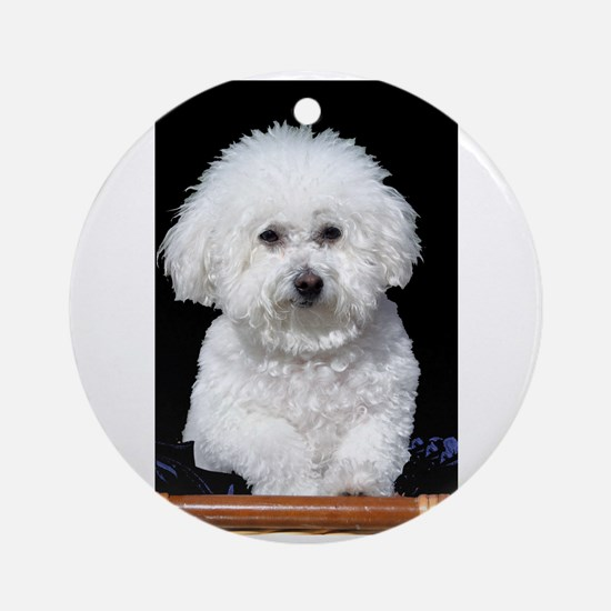 Fifi our Bichon Frise Ornament (Round)