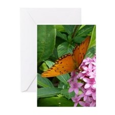 Cool Image Greeting Cards (Pk of 10)