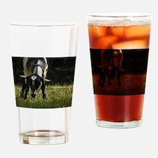 Alpine Drinking Glass