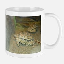 Turtles Mugs