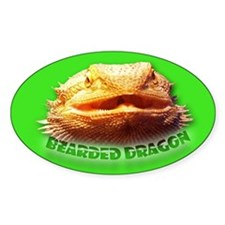 Bearded Dragon Oval Decal