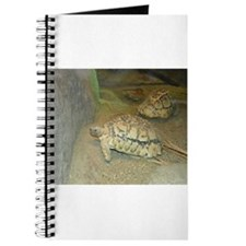 Turtles Journal