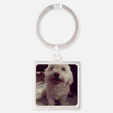 Cute Havanese dog Square Keychain