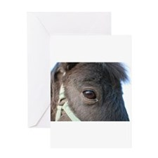 Cute Equestrians Greeting Card