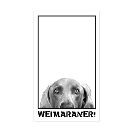 Weimaraner In A Box! Rectangle Sticker