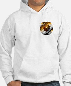 STAINED GLASS BEAR HEAD PRIDE 2 PKT Hoodie