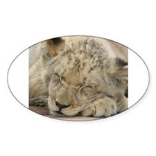 Lion20150808 Decal