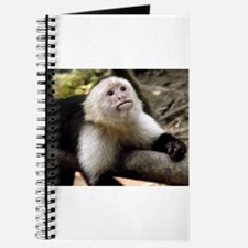 Baby Capuchin Monkey Journal