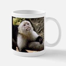 Baby Capuchin Monkey Small Mugs