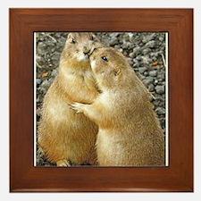 Prairie Dog Kiss Framed Tile