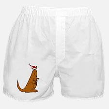 Funny Christmas Kangaroo Boxer Shorts
