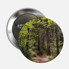 """Forest Trail 2.25"""" Button"""
