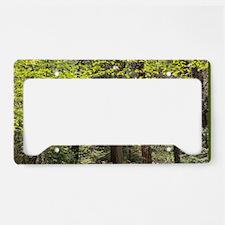 Forest Trail License Plate Holder