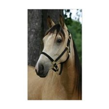 Andalusian filly profile Rectangle Decal