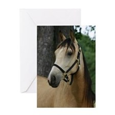 Andalusian filly profile Greeting Card