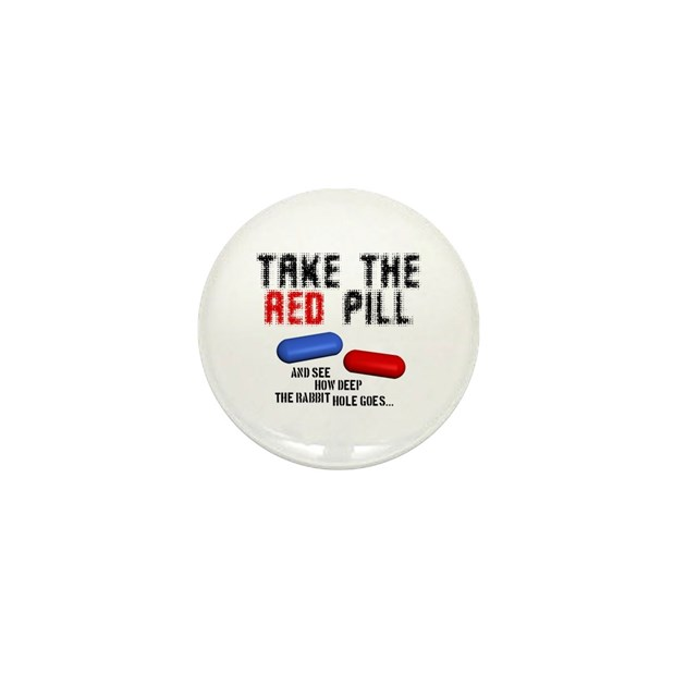 The Misfortune of Men An Essay On Red Pill Thinking