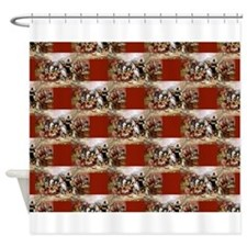 1st thanksgiving Shower Curtain