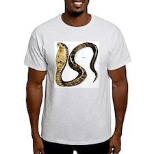 Cobra Snake (Front) Ash Grey T-Shirt