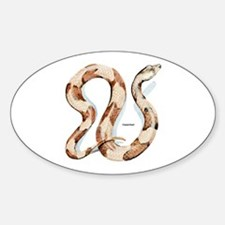 Copperhead Snake Oval Decal