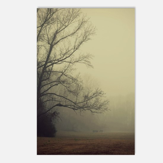 A Gathering of Fog Postcards (Package of 8)