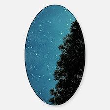 Star Light, Star Bright Sticker (Oval)