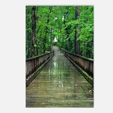 Take a Walk Postcards (Package of 8)