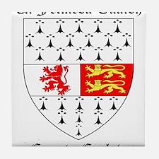 Ui Felmeda Tuaidh - County Carlow Tile Coaster
