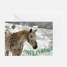 Appaloosa in the Snow Greeting Card