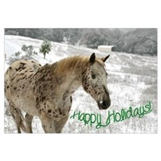 Appaloosa in the Snow Poster