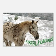 Appaloosa in the Snow Postcards (Package of 8)