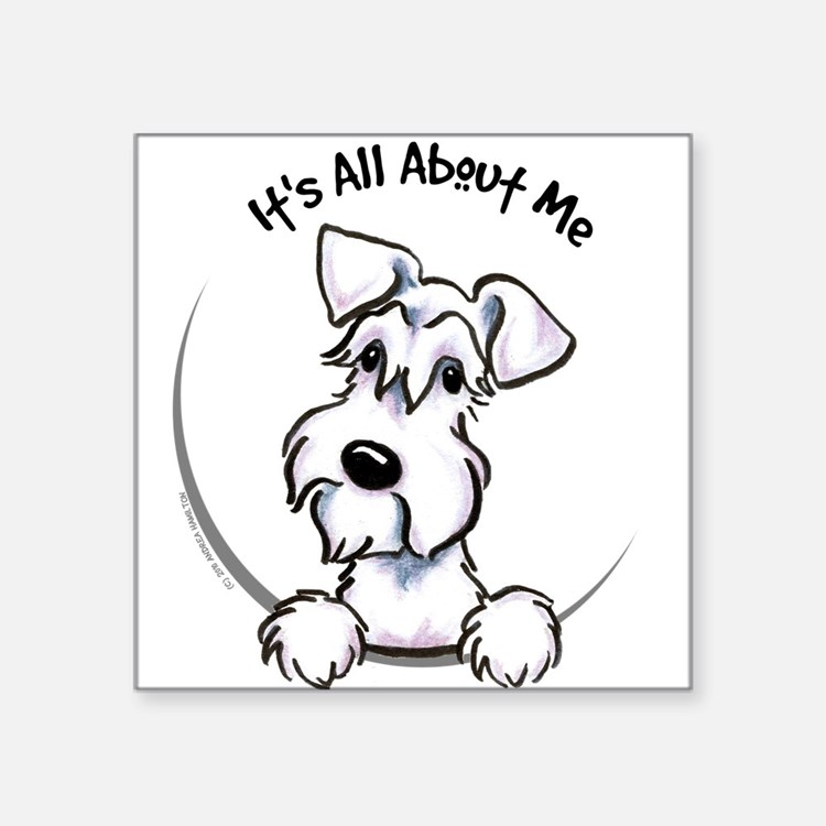 "Cute White schnauzer Square Sticker 3"" x 3"""