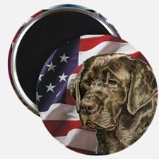 Chocolate Lab USA Flag Magnet