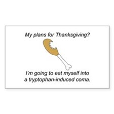 Turkey Tryptophan Plans Rectangle Decal