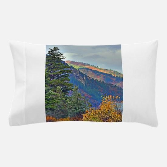 Autumn canyon Pillow Case