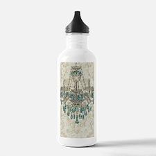 shabby chic damask vin Water Bottle