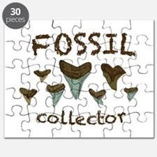 Fossil Collector Puzzle