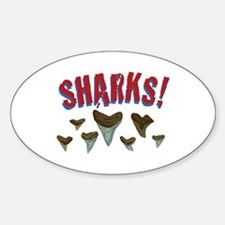 Sharks Teeth Decal