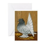 Indian Fantail Pigeon Greeting Cards (Pk of 10)