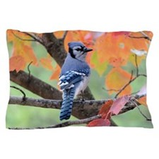 Autumn Blue Jay Pillow Case
