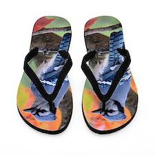 Autumn Blue Jay Flip Flops
