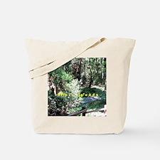 A Walk In Muir Woods Tote Bag