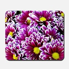 Purple, Pink, Dahlias Mousepad