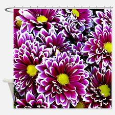 Purple, Pink, Dahlias Shower Curtain