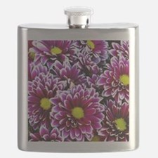Purple, Pink, Dahlias Flask