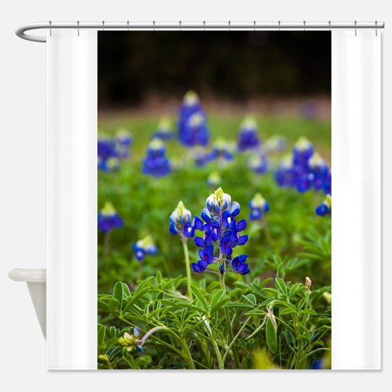 Bluebonnet Flowers Shower Curtain