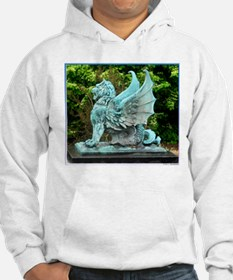 Dragon, art photo, Hoodie
