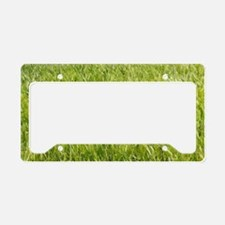 Unique Dandelion seeds blowing in the wind License Plate Holder
