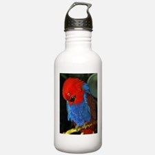 Blue and Red Eclectus Water Bottle