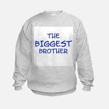 Cute Toddler big brother Sweatshirt
