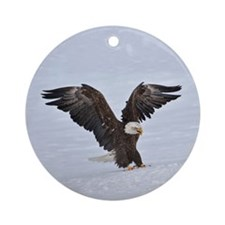The Eagle has landed Round Ornament
